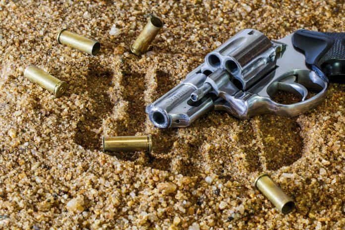 השבת רישיון נשק